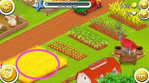 小麦畑中心に開墾