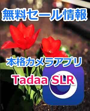 【iPhoneアプリセール情報】一眼レフ並みの背景ボケ写真が撮れるTadaa SLR【使い方解説】