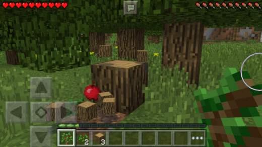 木材の採取