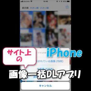 【iPhone】Webページ上に表示されている大量の画像をカメラロール外に一括ダウンロード保存するアプリ【Image Downloader & Viewer使い方】