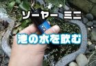 小型ハンディ浄水器「SAWYER ソーヤー ミニ SP128」で池の水を飲んでみた【使い方・レビュー】